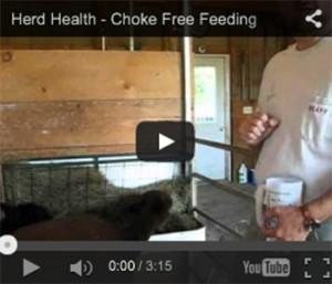 Choke Free Feeding
